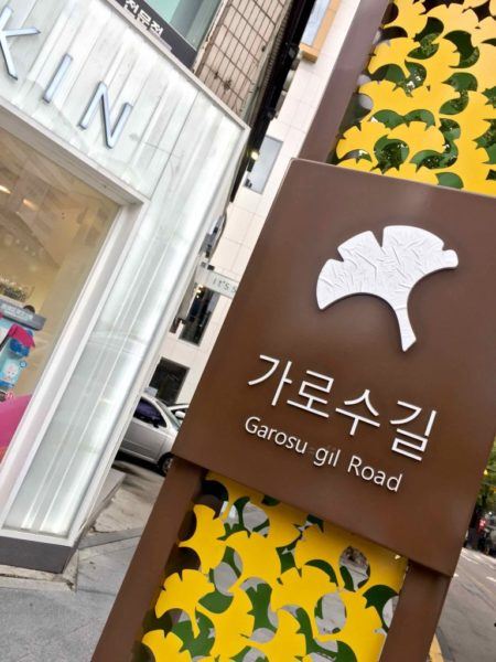 Garosu-Gil Cosmetic shopping - 1