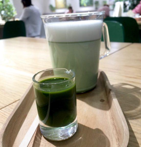 Innisfree Matcha tea - 1